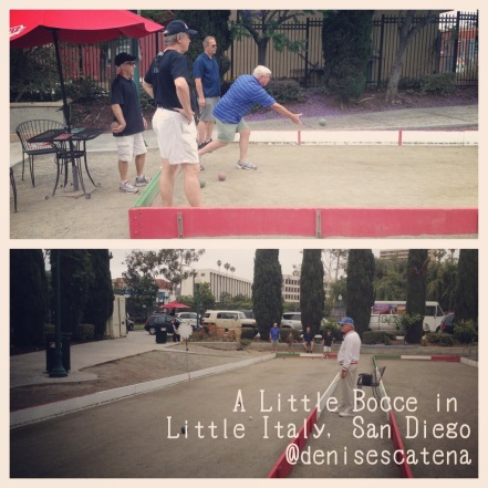 This group of gentlemen, won a Bocce Ball session and lunch in Little Italy as part of an auction item from a local charity event. They were having such a great time!